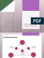 Organigrama Final antropometría