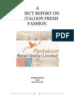 pantaloon_project.pdf