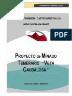 Minera Castrovirreyna.- Proyecto de Minado Temerario; Veta Caudalosa