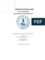 daller_flores_2010.pdf