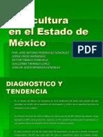 Diagnóstico de La Floricultura