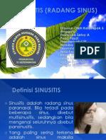 Sinusitis (Radang Sinus)