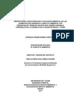 Identificacion Caracterizacion y Evaluacon Ambiental