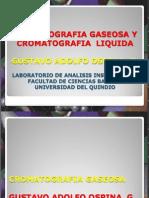 Cromatografias Gaseosa y Liquida.136 Dia.gustavo Adolfo