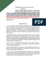 Contaminación Ambiental 2014 Marco Teorico Base