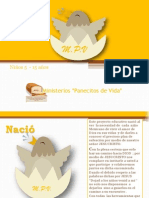 Presentacion MPV