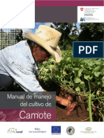 Manual de Manejo de Cultivo de Camote