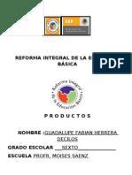 GUADALUPE FABIAN HERRERA DESILOS