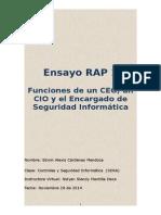 Ensayo RAP 1.doc