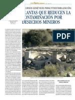Fitoestabilización INNA