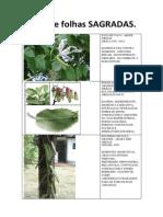 apostiladefolhassagradas-140414173421-phpapp02