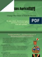 Pegasus Agriculture Hydroponics Farming