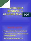 PATOLOGIA BENIGNA A SANULUI - curs