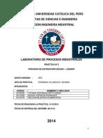 Informe Final Extraccion