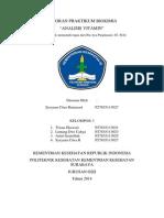 Laporan Biokimia - Analisis Vitamin - Sysyana Citra - p27835113027