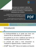 Seminario Toxicología. Biodisponibilidad de CD y Zn en S.capricornotum 2014 Final