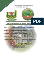 Informe de la practica de la Acción Geologica De Las Aguas Subterraneas.docx