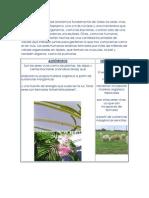 CELULA PROCARIOTA Y Y EUCARIOTA (RETRANCA).docx