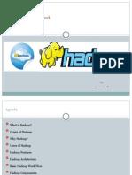 Hadoop Framework Demo