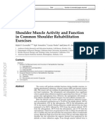 Shoulder Muscle Activity and Function in Common Shoulder Rehabilitation Exercises
