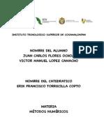 Metodos Numericos Victor Carlos
