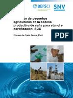 20111017 Informe Final Fao Cana Brava