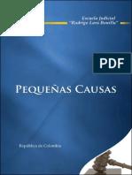 pequenas causas 25 01 08.pdf