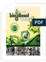 Biodiesel Informe 1.0