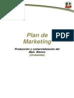 Plan de Mercadotecnia
