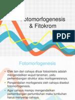 Fotomorfogenesis Dan Fitokrom Edit