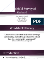 windshield survey presentation