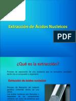 1.Extracción de Ácidos Nucleicos