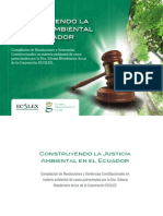 Construyendo Justicia Ambiental (1)