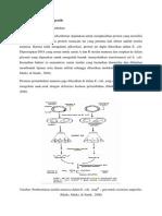 Pembuatan Proteik Terapeutik