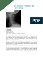 Equivalência entre as vértebras da coluna e o emocional.docx