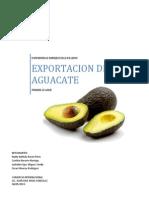Exportacion de Aguacate