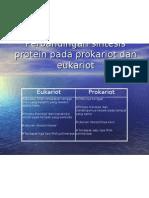 Perbandingan Sintesis Protein Pada Prokariot Dan Eukariot