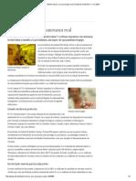 Bioterrorismo, Una Amenaza Real _ El Mundo _ DW.de _ 11.12