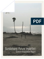 Sundarbans Adaption Report