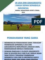 Investasi Untuk Masa Depan Sepakbola Indonesia Ok