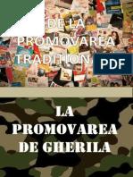 Introducere in Promovarea de Gherila1