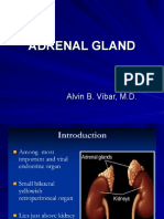 Adrenal and Pituitary