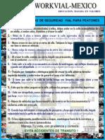 LAS 13 REGLAS BASICAS DE SEGURIDAD VIAL PARA PEATONES 2010