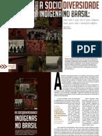 Texto 01 - A Sociodiversidade Indígena.pdf