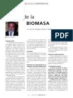 Ren Biomasa (2)