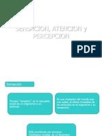 Atencion Percepciön 2013