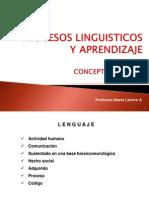 Conceptos basicos lenguaje