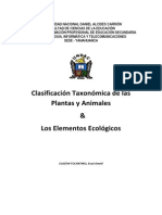 CLASIFICACION DE LAS PLANTAS Y ANIMALES
