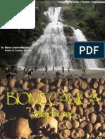 1. Biomecanicadelhueso 4 1
