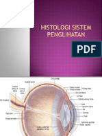 Histologi Sistem Penglihatan